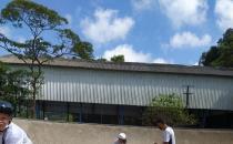 LigaSolidária恢复了30%的高度脆弱青少年的体育课程